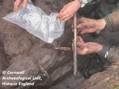 Small find 2: hazel/birch/alder stake. Copyright: Cornwall Archaeological Unit, Historic England